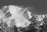 Shasta, Wind-Whipped Clouds, Southwest Side, Foreground Trees