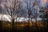 Stormy Sunny Morning