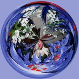 Amazing Circle 1