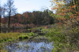 Pond along East side of pipeline