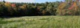 Panorama of First Dried Pond