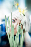 Hannah and the daffodils...