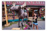 july 29 moose