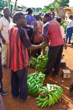 Cameroon scenes