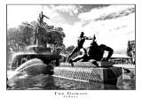 The Domain, Sydney