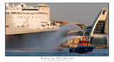 Through the Heads, the QEII departs Fremantle