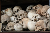 Some of the Dead