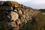 Long wall 2