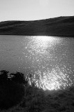 Sun on Lake 1 bw.jpg