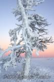 Finlandia_2814.jpg
