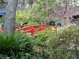 Japanese Gradens at Descanso