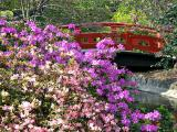 Descanso Japanese Gardens Retouch
