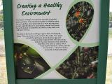 Live Butterfly exhibit (outside the Museum)