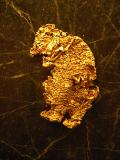 Natural California Gold in the shape of a Bear