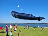 2010 Kite Festival