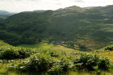 Countryside Lake District 08
