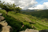 Countryside Lake District 36