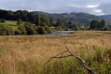 Countryside Lake District 39
