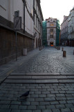 On the Streets in Prague 41