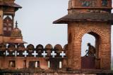Monkey at Raj Mahal