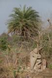 Hanuman Statue in Field