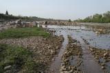The Betwa River Orchha 15