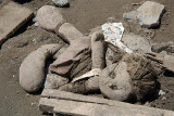 Mud Caked Doll Leh