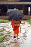 Sadhu with Umbrella Pashupatinath 02