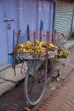 Bicycle of Bananas Bhaktapur