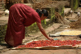 Woman Drying Chilies in Bhaktapur