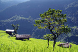 Annapurna Round