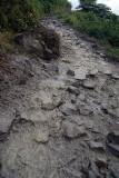 Muddy Path by Tikhedhunga