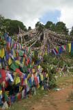 Prayer Flags above Monastery Pharping 02