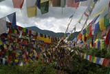 Prayer Flags above Monastery Pharping 03
