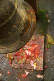 Bell and Floor Tile Sheesh Narayan Temple