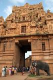 Elephant at Brihadeeswarar Temple Entrance