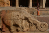 Carving of Elephant on side of Steps