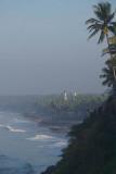 Palm Trees and Black Beach Varkala