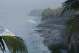Palm Trees and Black Beach Varkala 02