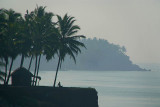 Sitting under Palm Trees on the Cliff Varkala