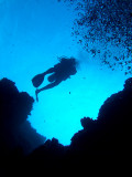 Diver Above