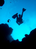 Diver Above 2