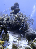 Divers at Chimney