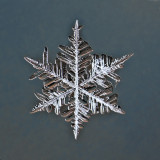 Snowflake, about 5 mm small