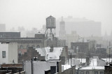 January 7-10, 2009 Photo Shoot