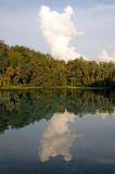 Rainbow River Reflections