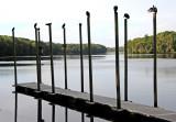 Suwannee River State Park - Live Oak, Florida