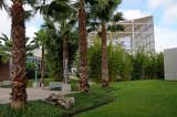Butterfly & Rainforest Museum