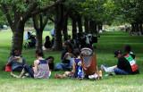 Summer 2010 - Brooklyn Botanic Garden
