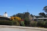 Mount Davidson & Vicinity